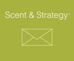 CONTACT US ScentStrategy 01